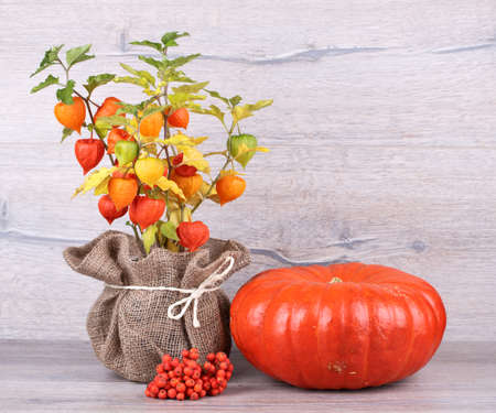 Fresh pumpkin with physalis  on wooden background photo