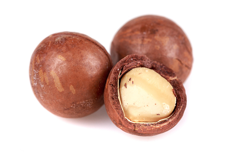 brown macadamia nuts seed on white background