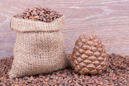 Cedar Cone On Background of  Pine Nuts Stock Photo