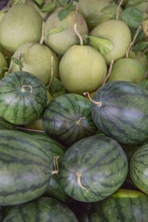 pomelo: Watermelons and Pomelo as Background Stock Photo
