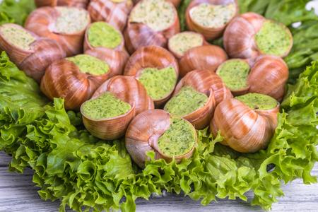 Escargots de Bourgogne on a  plate on wooden Background
