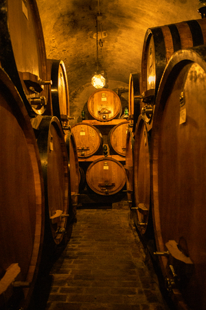 Wine barrels in wine-vaults in Italy
