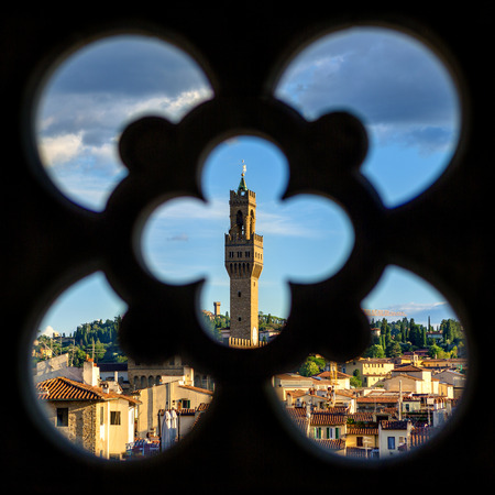 View on Florence city and the Cathedral