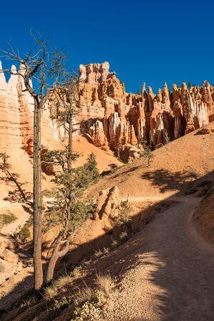 Bryce Canyon National Park, Utah, USA Stock fotó