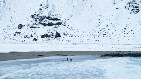 Brave surfers in the freezing cold Lofoten Island during winter, Norway