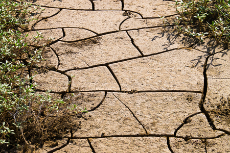 Dry cracked clay soil, texture background, Peru