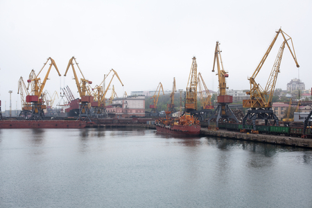 cargador frontal: Grúas de carga, puerto marítimo de Odessa