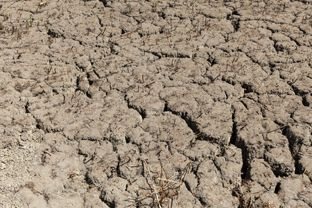 Cracked earth background texture. Abstract texture for background Bad ecology concept Stok Fotoğraf