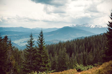 landscape in mountains Carpathians Ukraine, Dragobrat Horizontal image