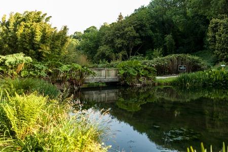 Botanical Garden Le Vallon du Stang Alar Brest France 27 may 2018 - small lake and bridge Summer season.