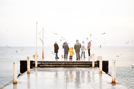 A group of people in winter clothes are standing on the dock and feeding the gulls from their hands. Winter sea and birds. Unrecognizable people by the sea in cold weather