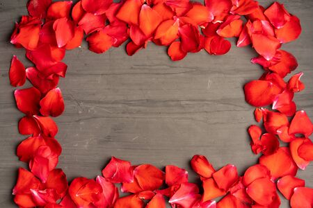 A square frame made of rose petals on a dark cement table. Festive background is suitable for any holiday.