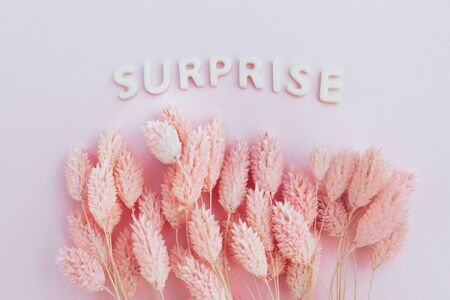 Beautiful pink dried flowers on a pink background with the inscription surprise in white letters and free space under the text. Minimal greeting card design