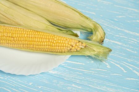 Corn cob with green leaves lies on white ceramic plate blue color background. Copy space for text. Stok Fotoğraf