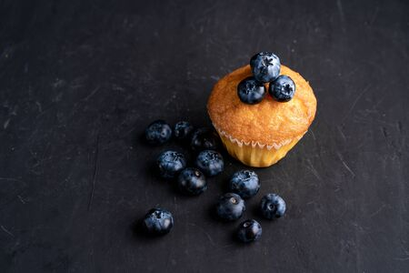 Blueberry antioxidant organic superfood and sweet muffin Concept for healthy eating and dieting nutrition Top view on dark black background Stok Fotoğraf