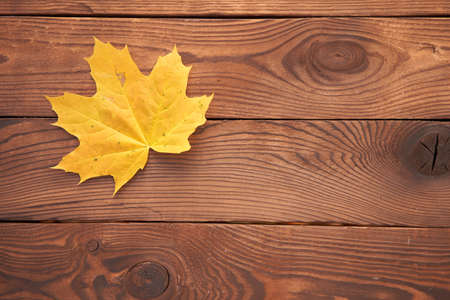 One orange maple autumn leaf lies on vintage wooden background top view Seasonal concept. Fall is coming Foto de archivo