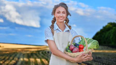 Woman farmer holding basket vegetable onion tomato salad cucumber standing farmland smiling Female agronomist specialist farming agribusiness Happy Girl dressed apron cultivated wheat field 스톡 콘텐츠