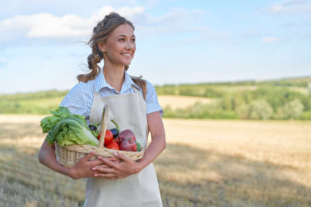 Woman farmer holding basket vegetable onion tomato salad cucumber standing farmland smiling Female agronomist specialist farming agribusiness Happy Girl dressed apron cultivated wheat field 스톡 콘텐츠 - 165320891