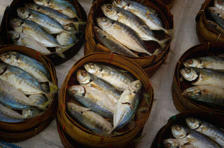 barrels of fish  Stock Photo