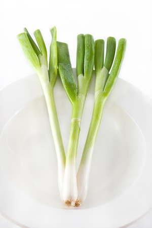 frische grüne Zwiebel