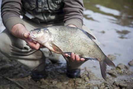 Große Männchen Strahl cought in einem kleinen Fluss auf einem Float System