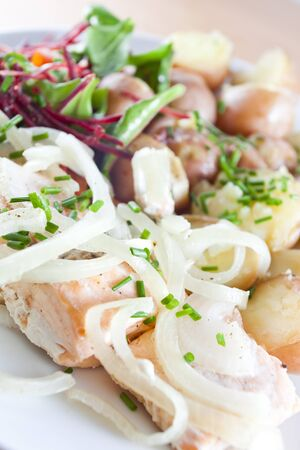 Grilled salmon with fresh salad , potatoes, onion and herbs - Ducan diet Stock Photo - 13233931