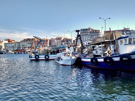 Fishing boats docked in O Grove Spain during a nice bright day