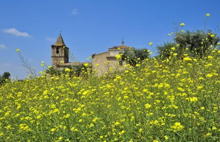 extremadura: meadow and castle at Medellin (Extremadura, Spain)