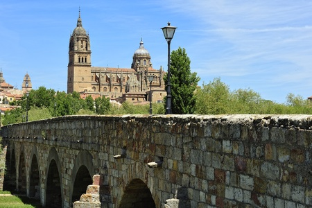 Roman Bridge and Old Cathedral at Salamanca (Castile and Leon, Spain)