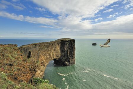 Dyrholaey sea rock arch, Iceland photo