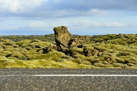 lava field at Eldhraun, Iceland  Focus on background  photo