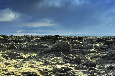 lava field at Eldhraun, Iceland photo