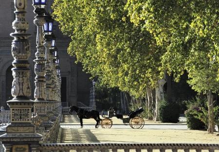 horse and carriage at Parque de Maria Luisa  Maria Luisa Park , Seville, Spain 免版税图像