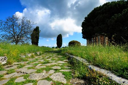 sacra: Via Sacra, Paestum, Italy Stock Photo