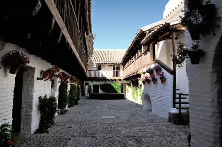 mentioned: Cordoba, Spain - patio of Centro Flamenco Fosforito at Posada del Potro, mentioned by Cervantes in Don Quixote.