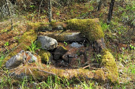 well water: old well water parapet in the forest