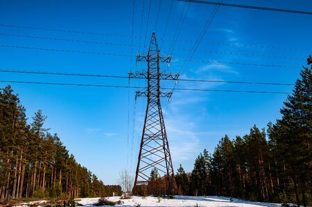 electrical high voltage power line in the forest lsndscape in spring Banque d'images - 130768722