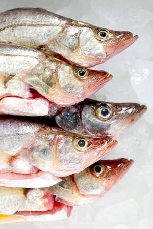 occhi sbarrati: Capi di occhi di pesce crudo congelato wih spalancati
