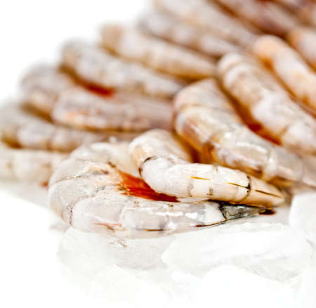 Group of raw shrimps on ice - seafood concepts  photo