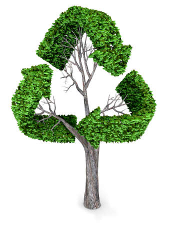 3D recycling tree – isolated over a white background photo
