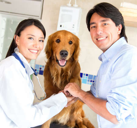 Teamwork at the vet with a cute dog giving his paw photo