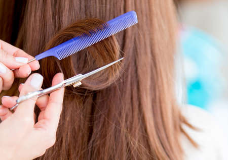 Close up a haircut with scissors cutting long hair Stock Photo - 19142984