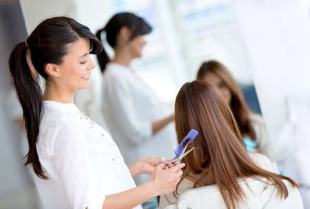 Woman at the hair salon getting a haircut Stock Photo - 19249080