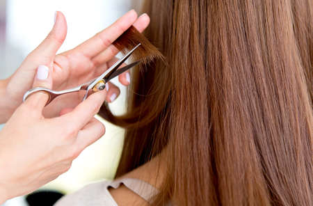 Stylist cutting split ends on her client at the salon photo