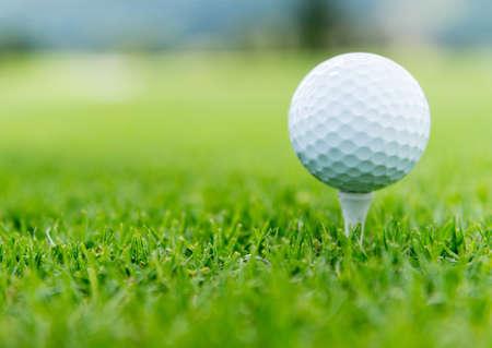 pelota de golf: Primer plano de una pelota en el campo de golf