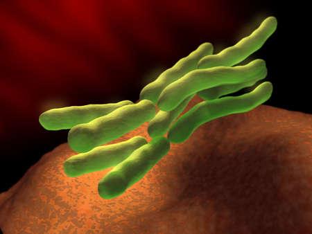 Some bacteria replicating inside the human body. Digital illustration.
