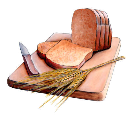 Fresh sliced bread and wheat on a wood cutting board. Original hand painted illustration. Stock Illustration - 3135437
