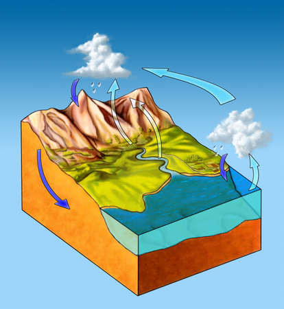 precipitacion: Diagrama del ciclo del agua. Ilustraci�n digital. Foto de archivo