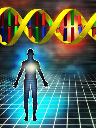 ser humano: ADN como la piedra angular de los seres humanos. Ilustraci�n digital.