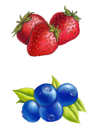 fructose: Strawberries and blueberries on white background. Digital illustration. Stock Photo